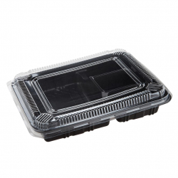 Disposable Bento Box 4 partitions PP+PET (25 sets)